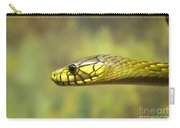 Green Snake. Carry-all Pouch