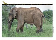 Greener Pastures-after The Rains Carry-all Pouch