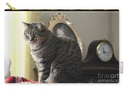 Greeting Card Cat Carry-all Pouch