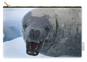 Greetings From Antarctica.. Carry-all Pouch