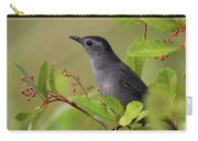 Grey Catbird Carry-all Pouch