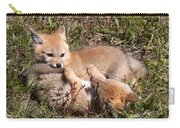 Grey Fox Kitts At Play Carry-all Pouch