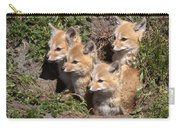 Grey Foxes At Den Carry-all Pouch