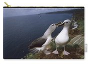 Grey-headed Albatrosses At Nest Site Carry-all Pouch