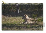 Grey Wolf   #3273-signed Carry-all Pouch