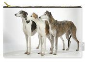 Greyhound Dogs Carry-all Pouch