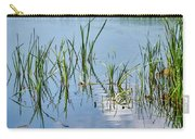 Greylake Reflections Carry-all Pouch