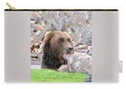 Grizzly Bear 02 Postcard Carry-all Pouch