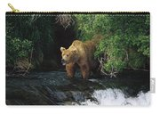 Grizzly Bear Fishing Brooks River Falls Carry-all Pouch