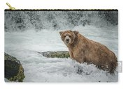 Grizzly Stare Carry-all Pouch