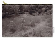 Gross Point Beach Grasses Bw Carry-all Pouch