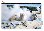 Grotto Geyser Yellowstone Np Carry-all Pouch