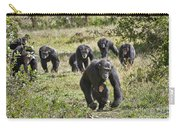 group of Common Chimpanzees running Carry-all Pouch