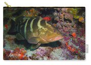 Grouper Carry-all Pouch