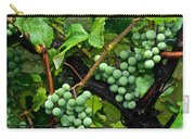 Growing Season Carry-all Pouch by Frozen in Time Fine Art Photography