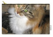Grumpy Kitty With Emerald Eyes Carry-all Pouch
