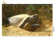 Florida Gopher Tortoise And Home Carry-all Pouch
