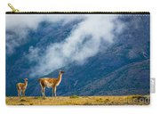 Guanaco Mother And Child Carry-all Pouch