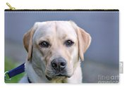Guide Dog In Training Carry-all Pouch