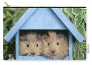 Guinea Pig In House Gp104 Carry-all Pouch