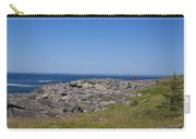 Gull Perch Carry-all Pouch