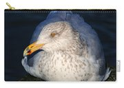 Gull Resting Carry-all Pouch