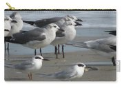 Gulls And Terns Carry-all Pouch