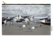 Gulls Terns Skimmers Carry-all Pouch