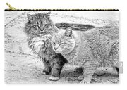 Gutter Kitties Four Carry-all Pouch
