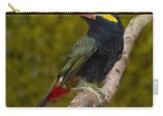 Guyana Toucanet Carry-all Pouch