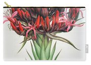 Gymea Lily Carry-all Pouch