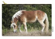 Haflinger 1 Carry-all Pouch