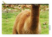 Hairy Brown Gumby Aka Brown Alpaca Carry-all Pouch