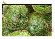 Hairy Peary Chayote Squash By Diana Sainz Carry-all Pouch