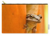 Halloween Surprise  Carry-all Pouch by Jean Noren