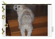 Handsome Havanese Pup Carry-all Pouch