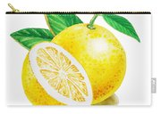 Happy Grapefruit- Irina Sztukowski Carry-all Pouch