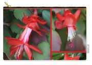 Happy Holidays Natural Christmas Card Or Canvas Carry-all Pouch