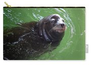 Happy Seal Carry-all Pouch
