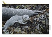 Harbor Seal Pup Resting Carry-all Pouch