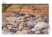 Harbour Seal On Pebble Beach Carry-all Pouch