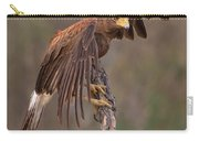 Harris's Hawk 1 Carry-all Pouch