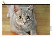 Hattie The Kitty Carry-all Pouch