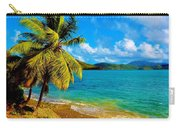 Haulover Bay Usvi Carry-all Pouch