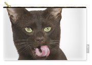 Havana Brown Cat Carry-all Pouch