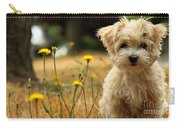 Havanese Puppy  Carry-all Pouch