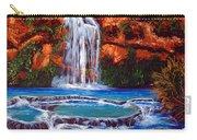 Havasu Falls Cheryln1955@gmail.com Carry-all Pouch