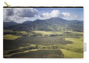 Hawaiian Pineapple Fields Carry-all Pouch