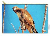 Hawk In A Glow Carry-all Pouch