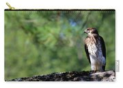 Hawk In Tree Carry-all Pouch